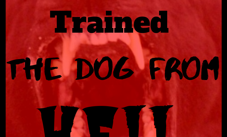 How I trained The Dog From Hell