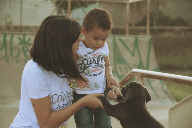 Puppy Training For Kids: Everything You Need To Know
