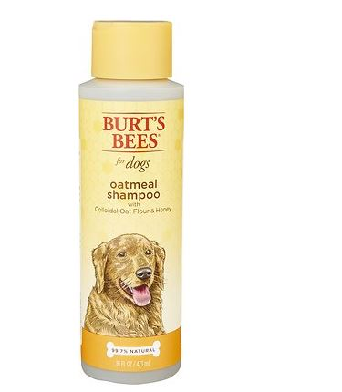 best shampoo for itchy dogs