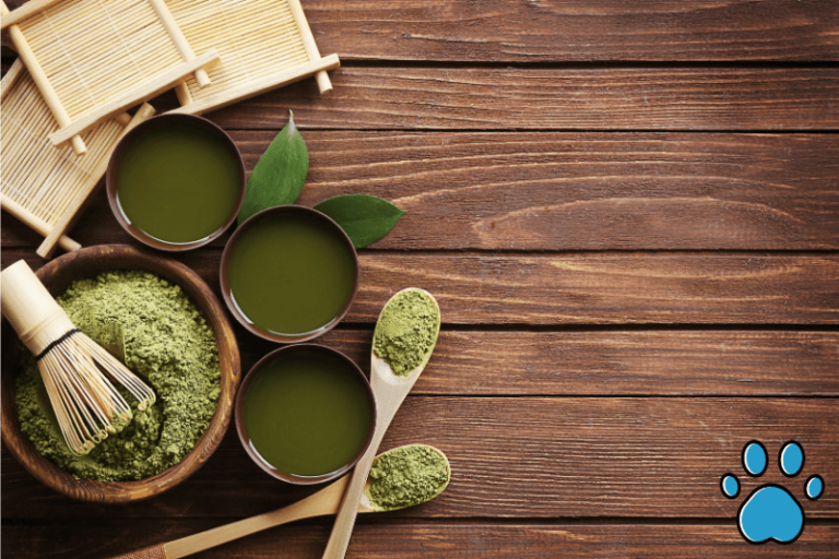 Are Chinese herbs safe for dogs? (Which ones are beneficial)